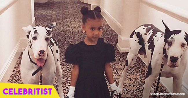 Kim Kardashian steals hearts with pic of daugher North rocking yellow dandelions in her braids